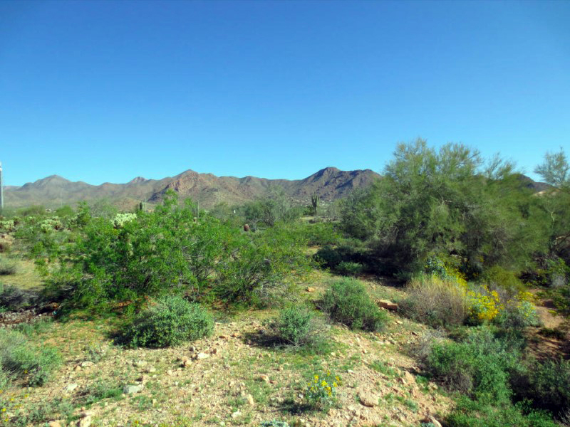 Terrain pour l Vente à One of Four Easy-Build Lots In The Sought-After Shea Corridor 13102 E Cochise Rd #4 Scottsdale, Arizona 85259 États-Unis