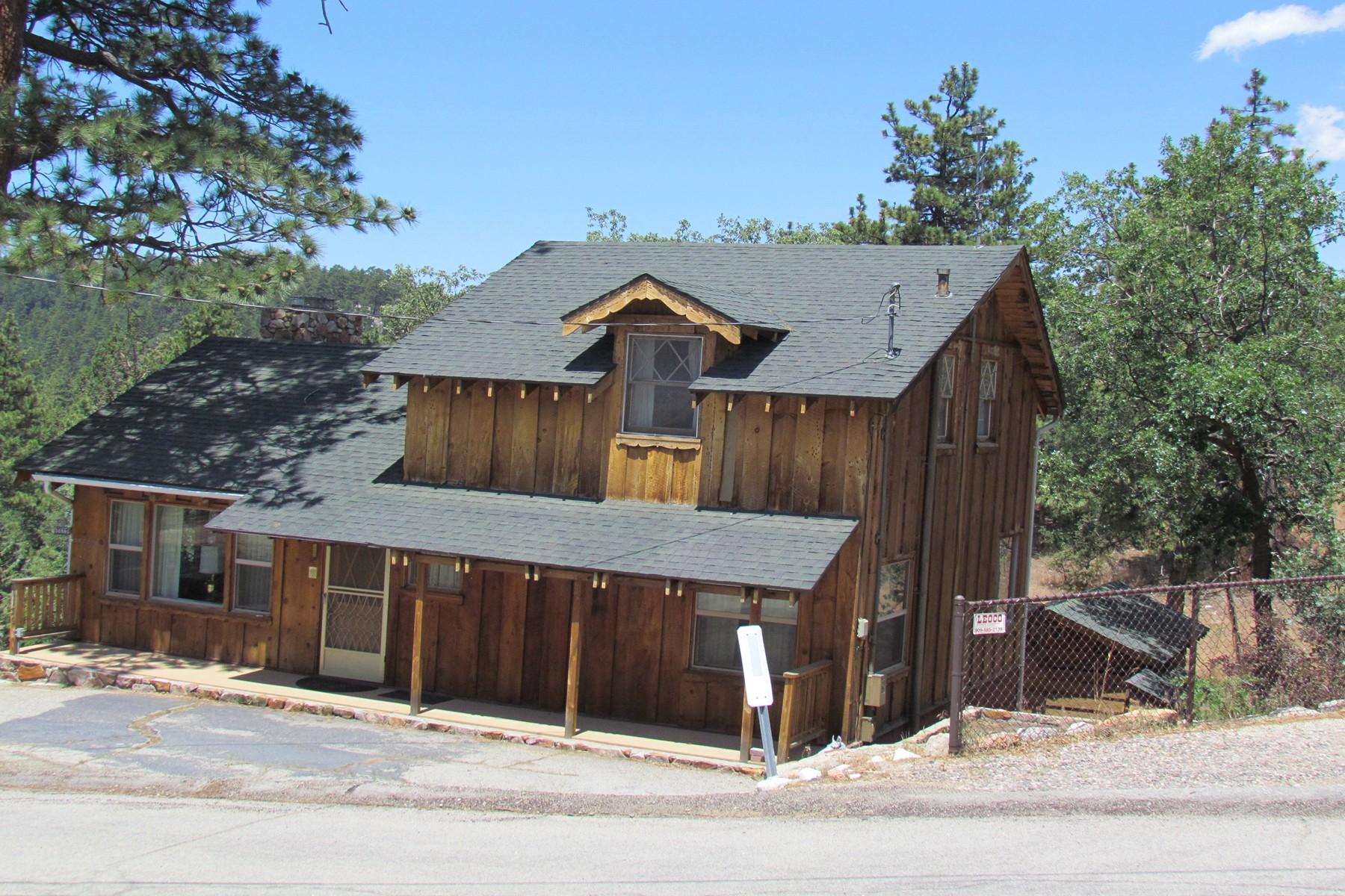 Maison unifamiliale pour l Vente à 1156 Bruin Trail Fawnskin, Californie, 92333 États-Unis