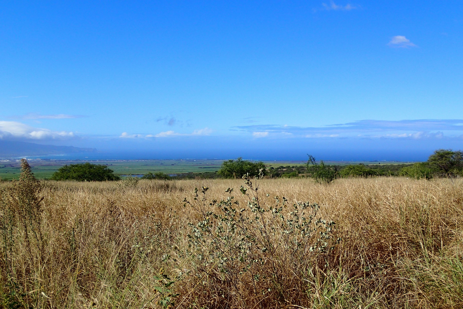sales property at Build Your Dream Maui Home - 5.32 Acres - Omaopio Ridge