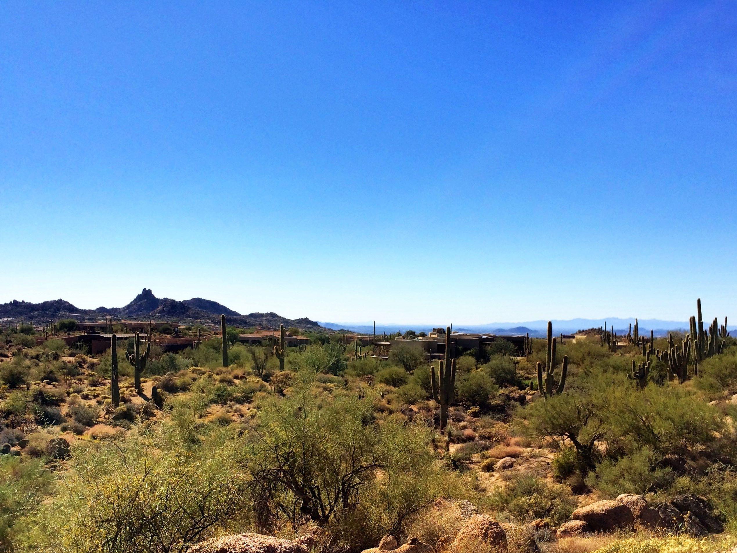 地產 為 出售 在 Custom Homesite in Sonoran Reserve 11336 East Cinder Cone Trail Scottsdale, 亞利桑那州 85262 美國