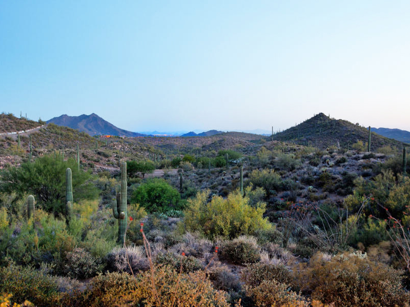 Property Of Amazing Views on 3+ Acres in Desert Mountain