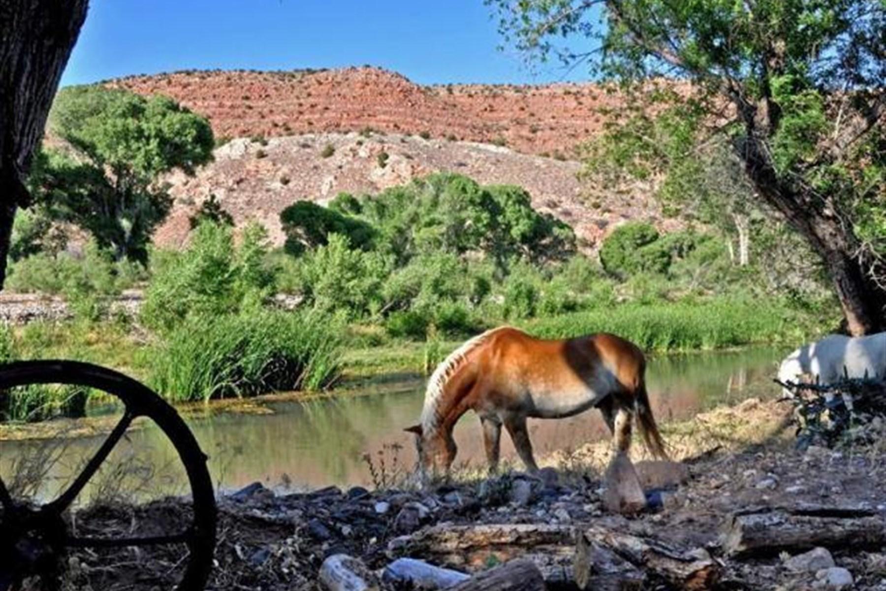 Moradia para Venda às Exquisite Piece of the West rarely 1111 E Perkinsville Rd Chino Valley, Arizona, 86323 Estados Unidos