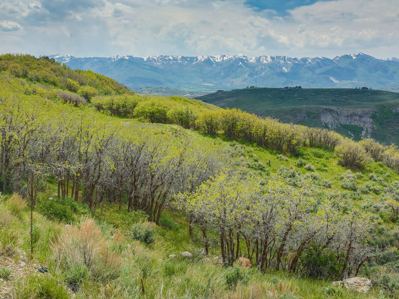 Land for Sale at Extraordinary Promontory Home-site in the Upper Northgate Location 2601 Longspur Ln Lot 4 Park City, Utah 84098 United States