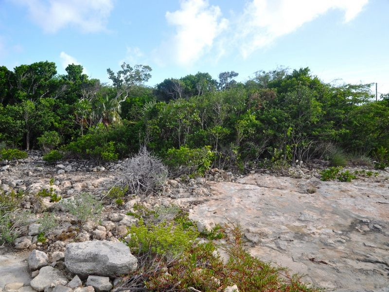 Additional photo for property listing at Lot #C-7344 乔治城, 伊克苏马海 巴哈马