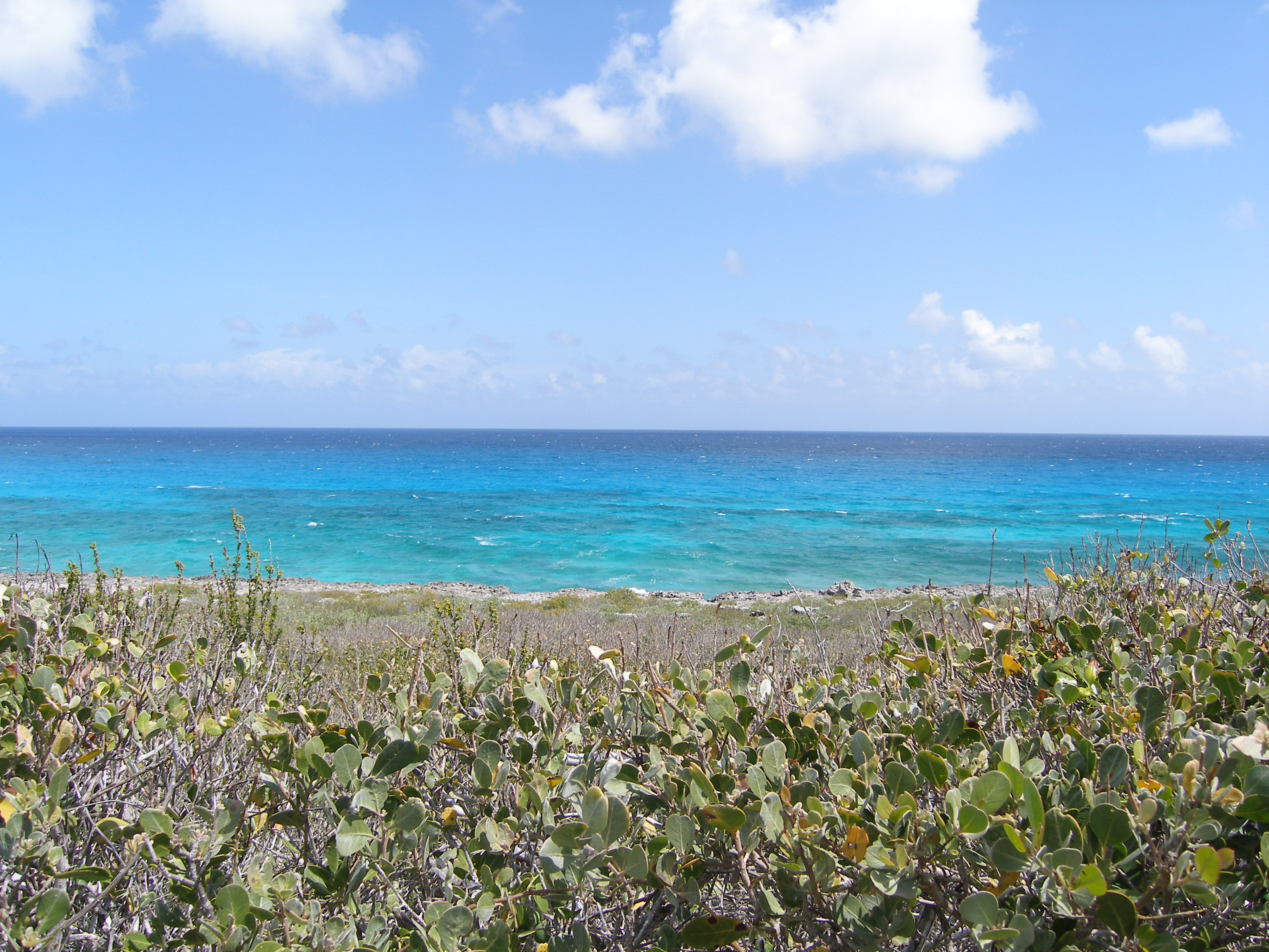 Land for Sale at Ocean Drive Waterfront Rainbow Bay, Eleuthera Bahamas