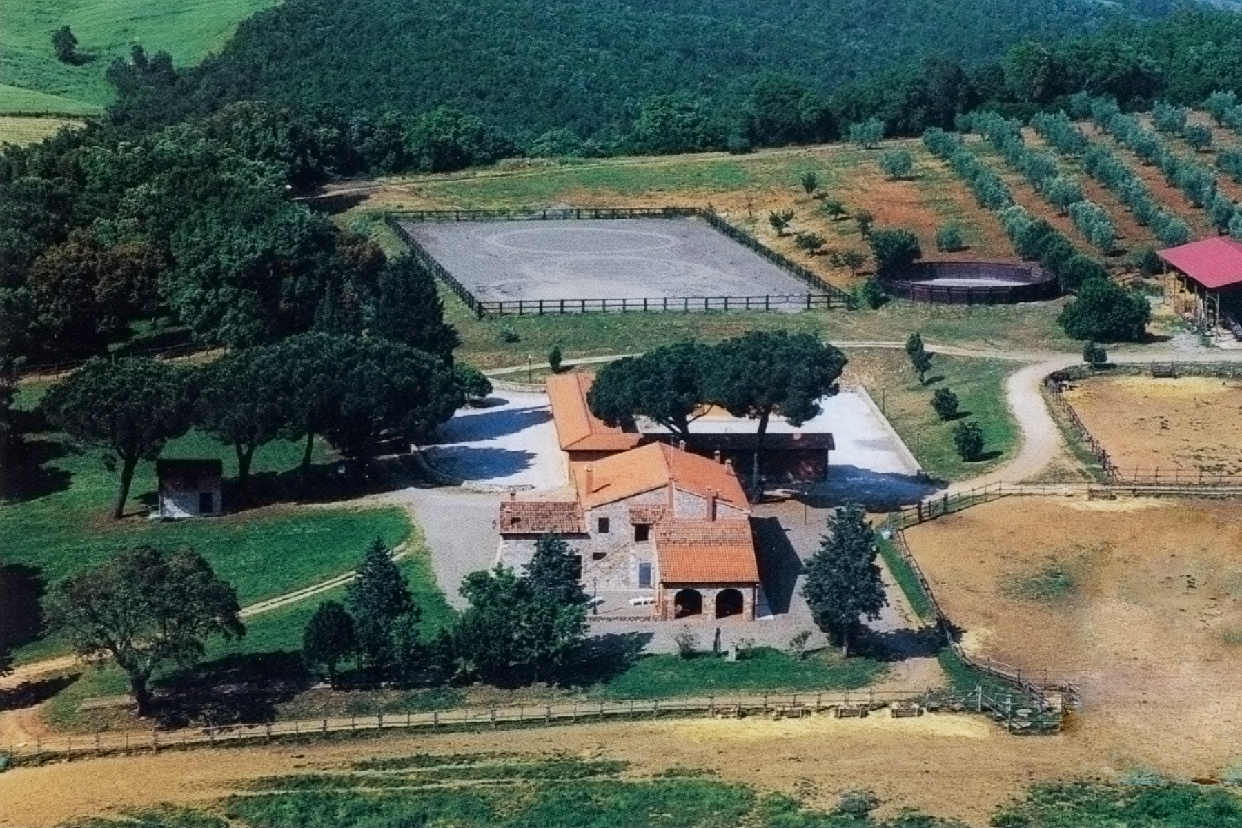 Farm / Ranch / Plantation for Sale at Stunning property in Maremma Montorsaio Campagnatico, Grosseto 58042 Italy