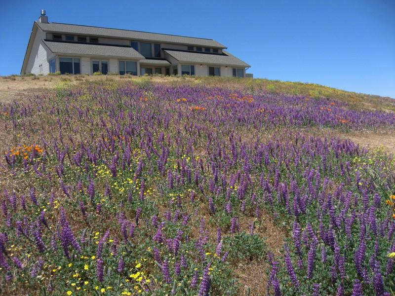 Villa per Vendita alle ore 2855 Ridge Route Dr. Lebec, California, 93248 Stati Uniti