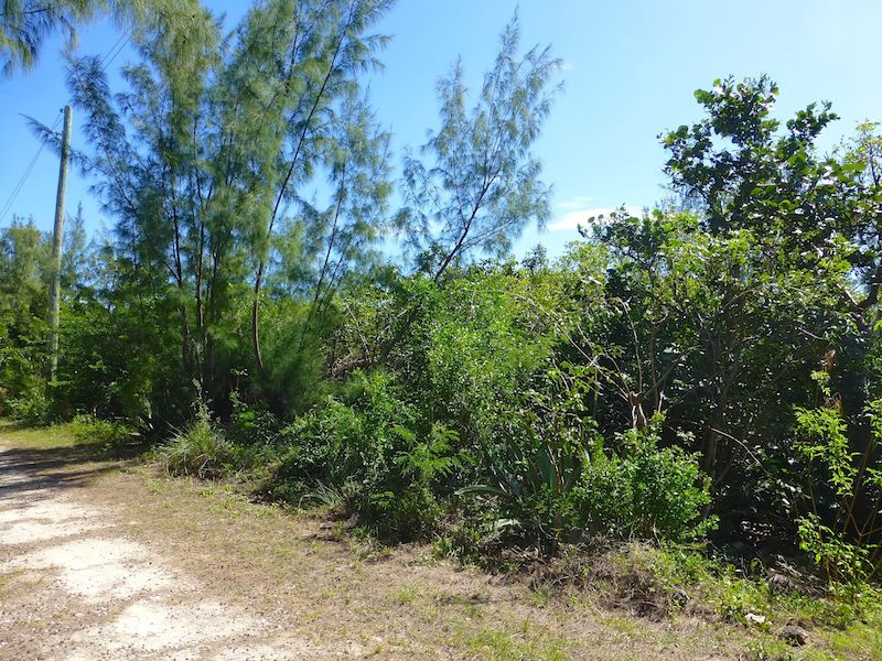 Terreno por un Venta en Tranquil Rainbow Bay Lot Priced to Sell Rainbow Bay, Eleuthera Bahamas
