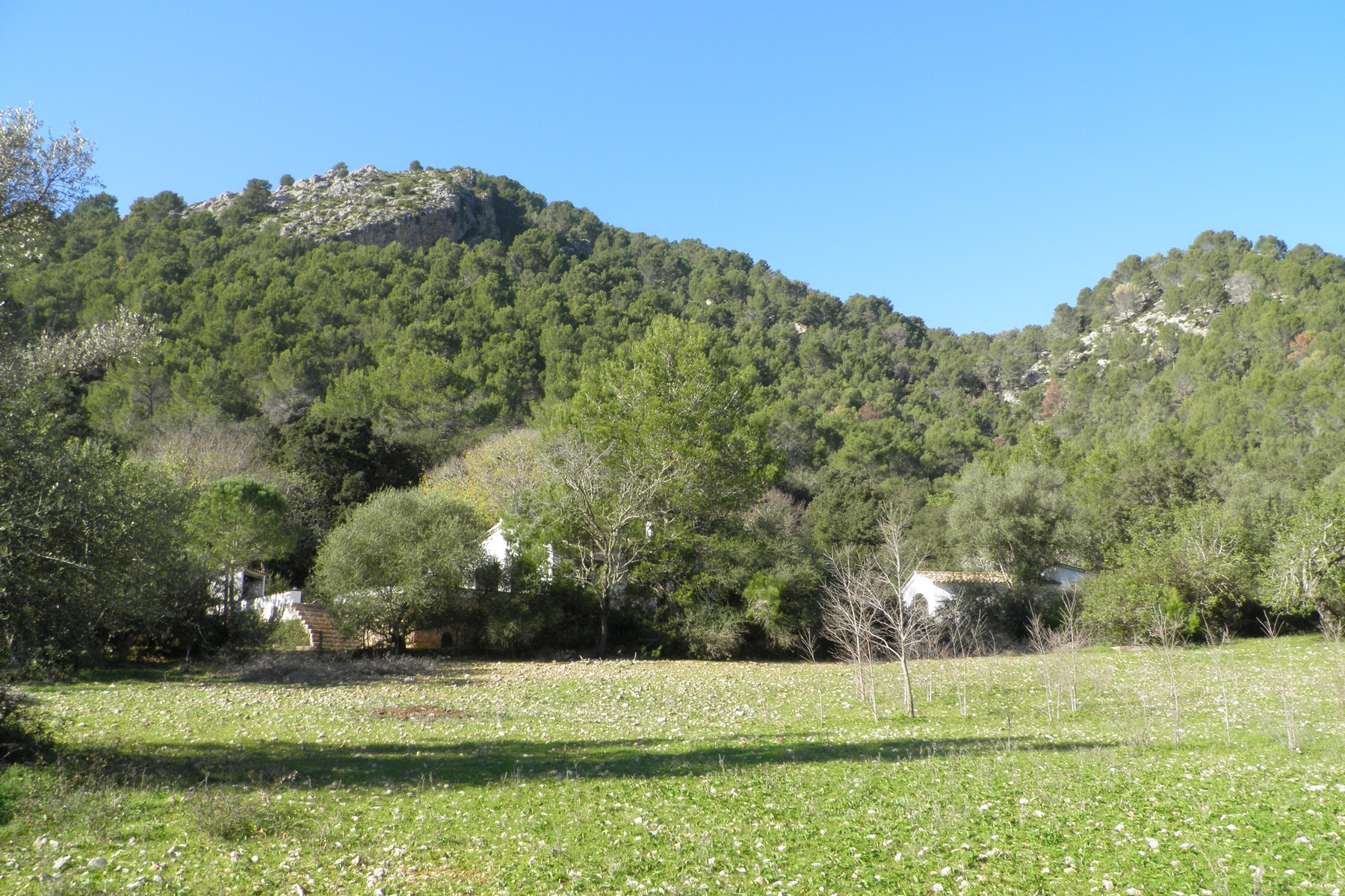 Single Family Home for Sale at Historic Estate in Pollensa Pollensa, Mallorca, 07460 Spain