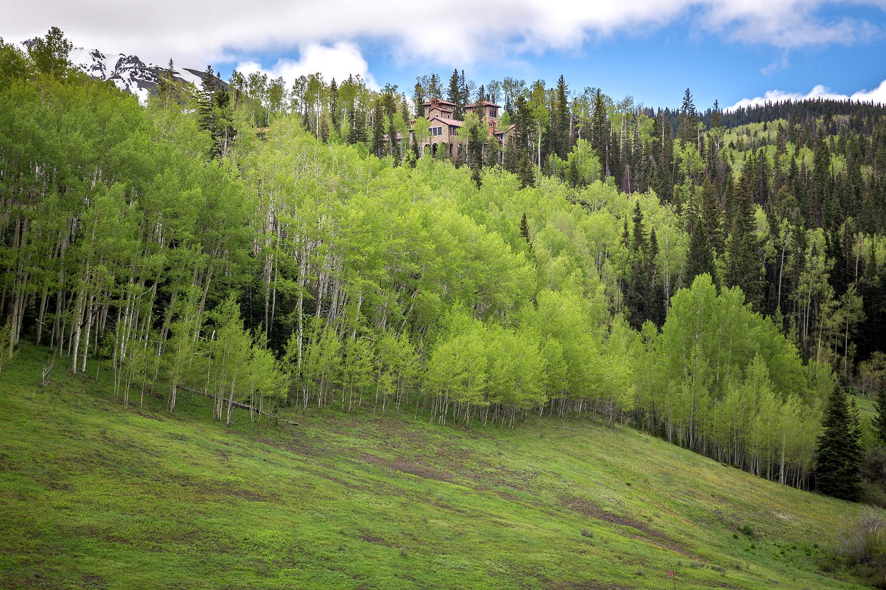 Casa Unifamiliar por un Venta en Villa Montagna 146 Hood Park Telluride, Colorado 81435 Estados Unidos