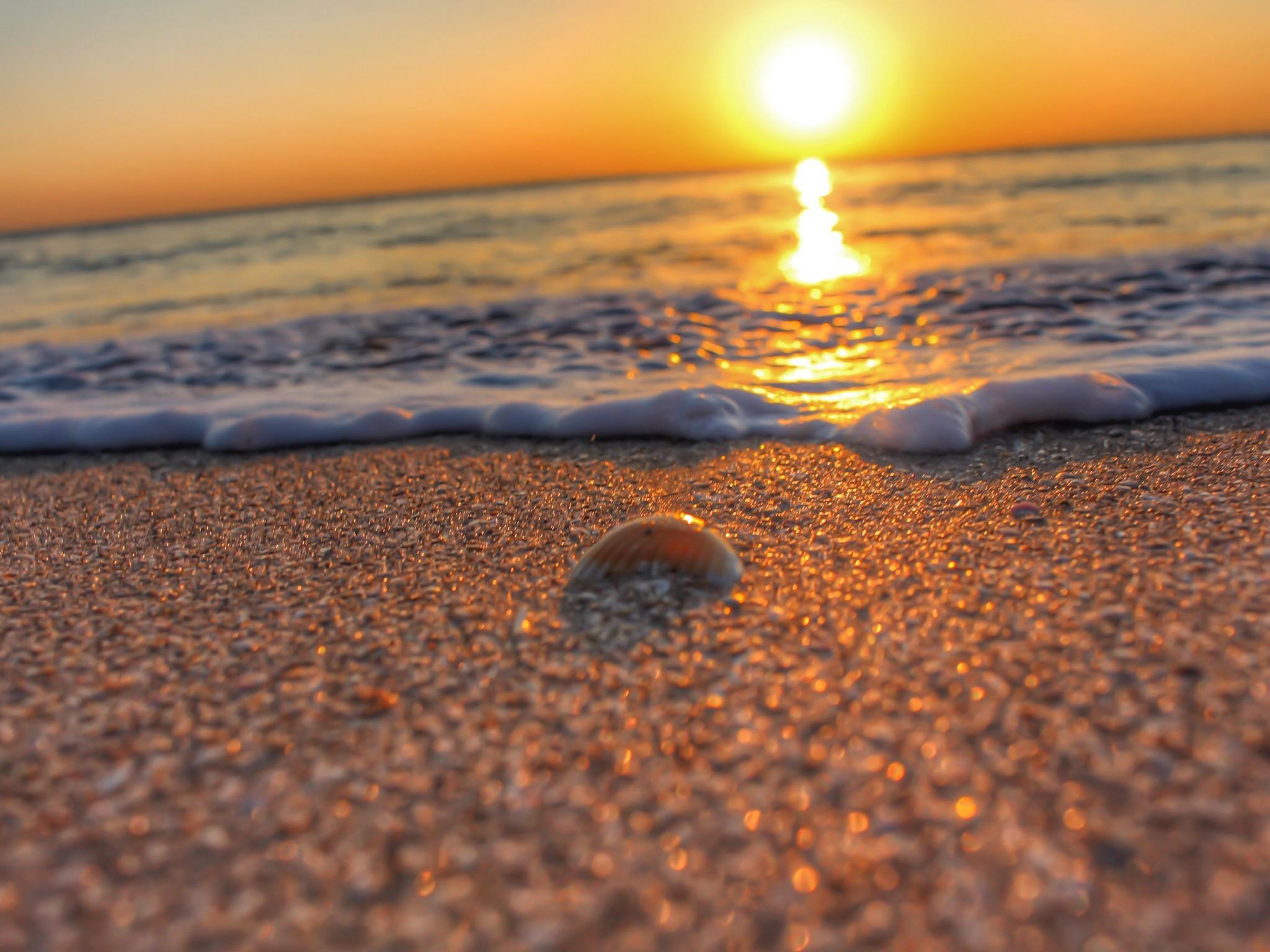 Property Of Stunning Sea Oaks Condo