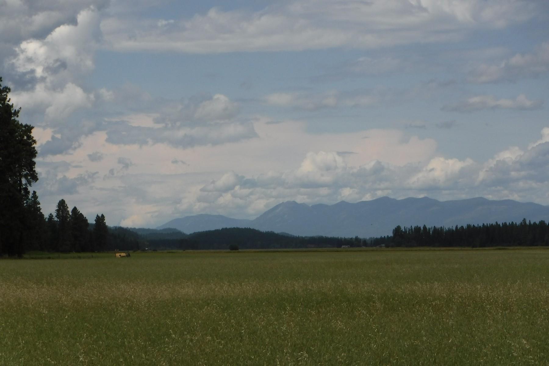 토지 용 매매 에 Sweeping Mountain Views NHN Kuhns Road Whitefish, 몬타나 59937 미국