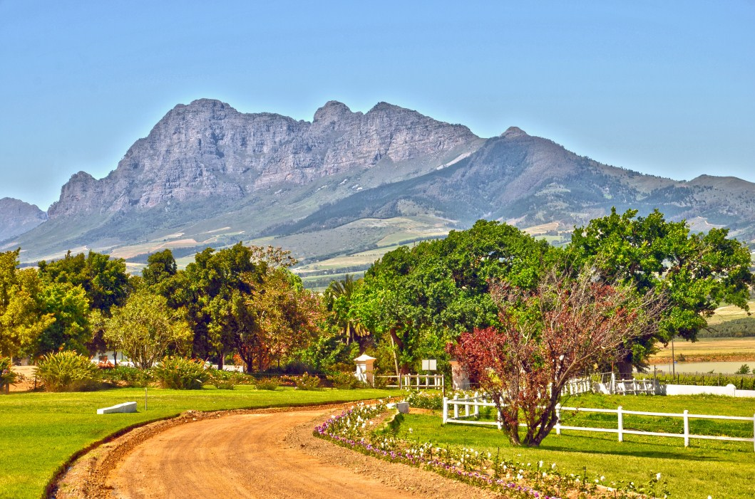 Fattoria / ranch / campagna per Vendita alle ore South African Icon Wine Estate Paarl, Capo Occidentale 7655 Sudafrica