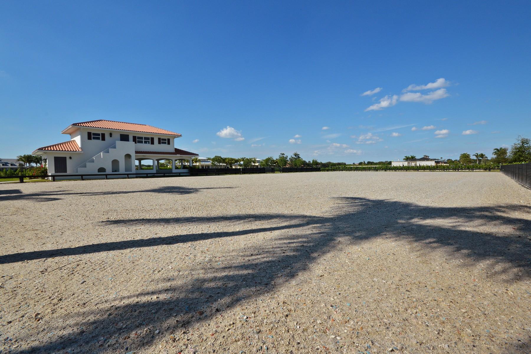 Property Of 3689 Grand Prix Farms Drive