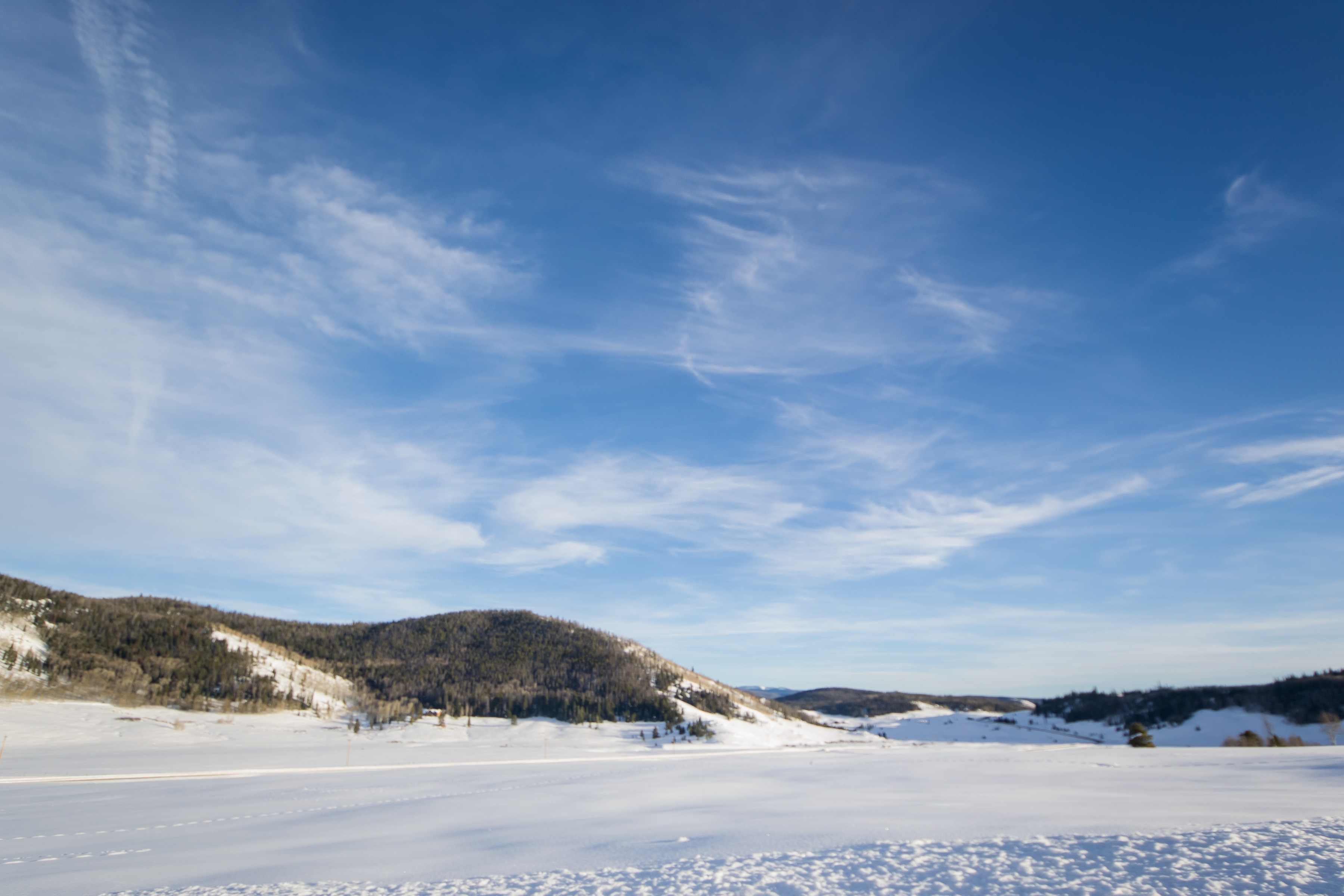 Land for Sale at 1.28 Acres at Steamboat Lakes TBD Aspen Ct Clark, Colorado, 80428 United States