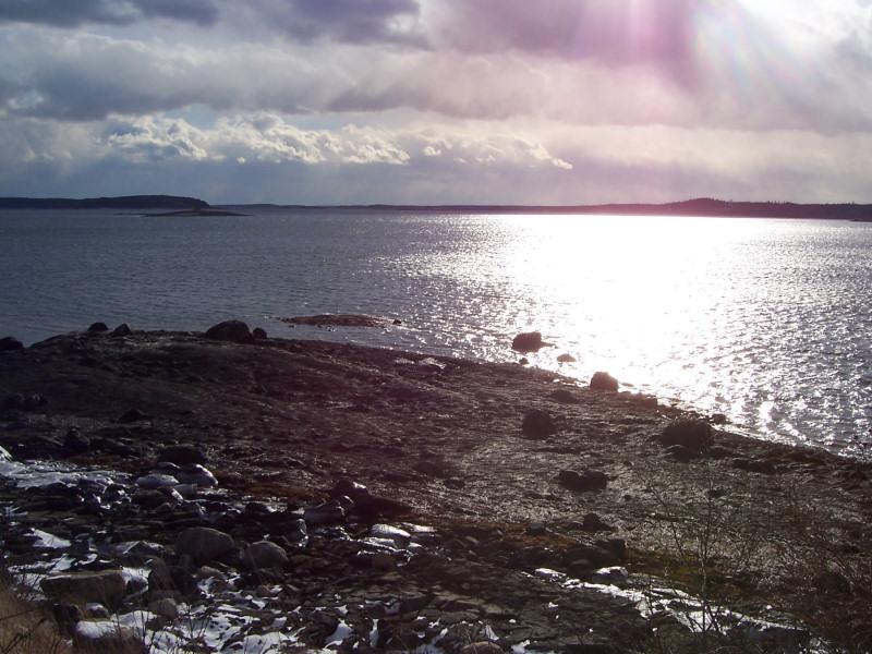 Terreno per Vendita alle ore Serenity Cove 0 Old Wagon Trail Road Roque Bluffs, Maine 04654 Stati Uniti