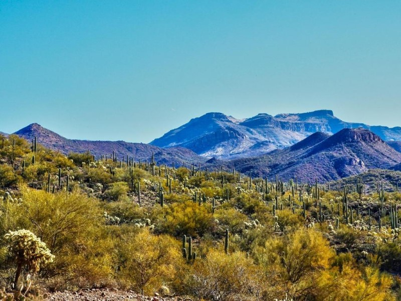 Property Of 200 Acre Pristine Mountain Located in the Aravaipa Canyon with Mineral Rights