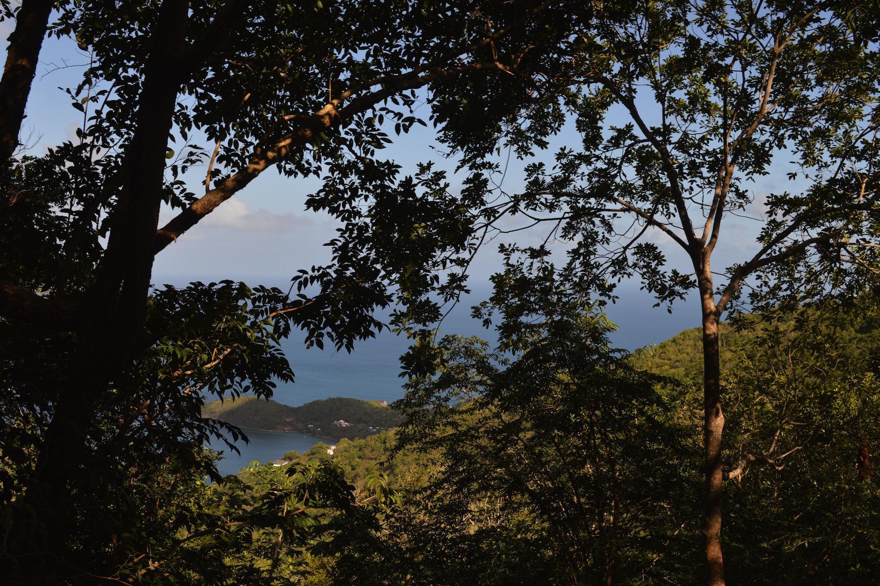 Terrain pour l Vente à Newbush Land Other Tortola, Tortola Iles Vierges Britanniques