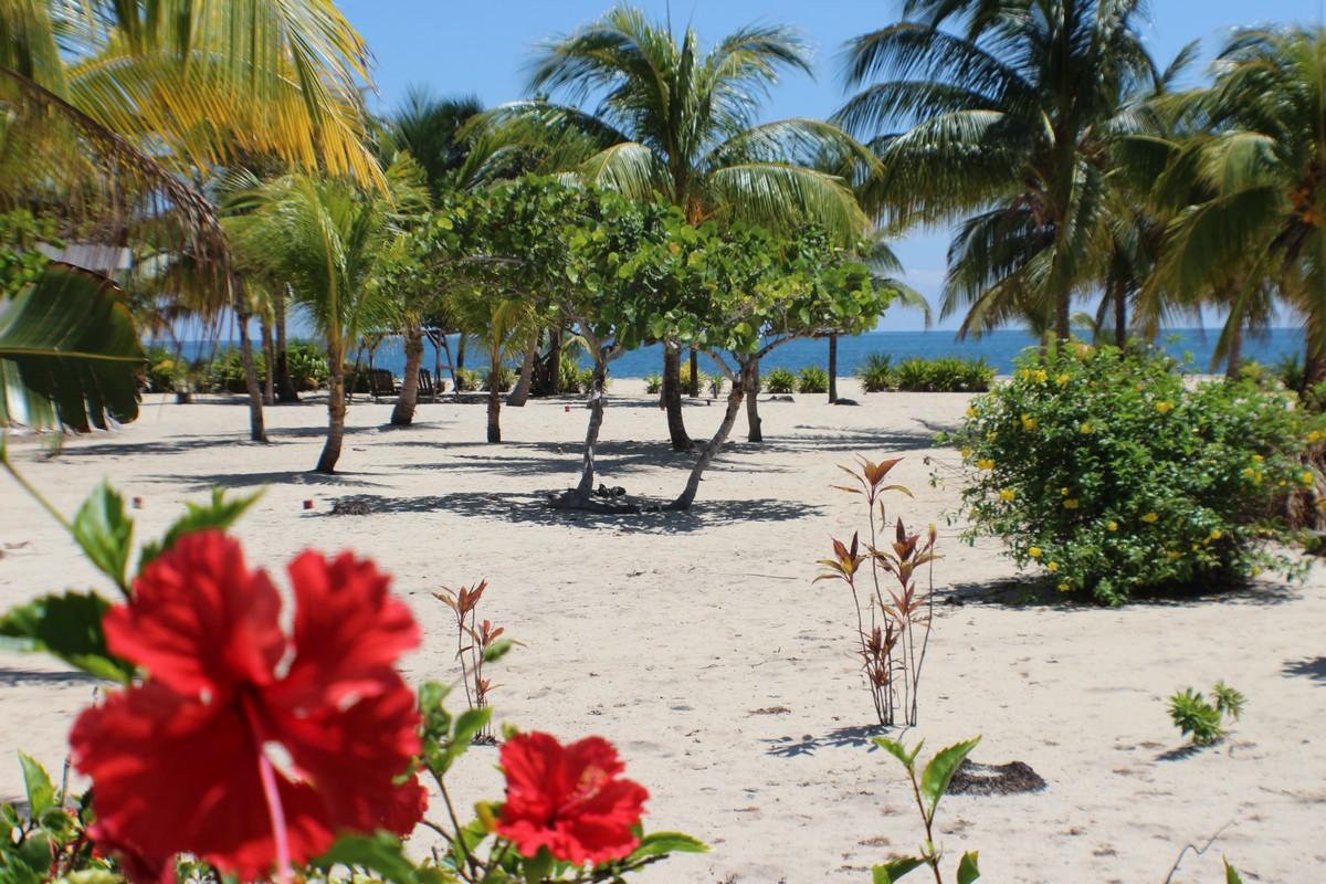 Terrain pour l Vente à Hibiscus Beach Residences Lot #22 Placencia, Stann Creek, Belize
