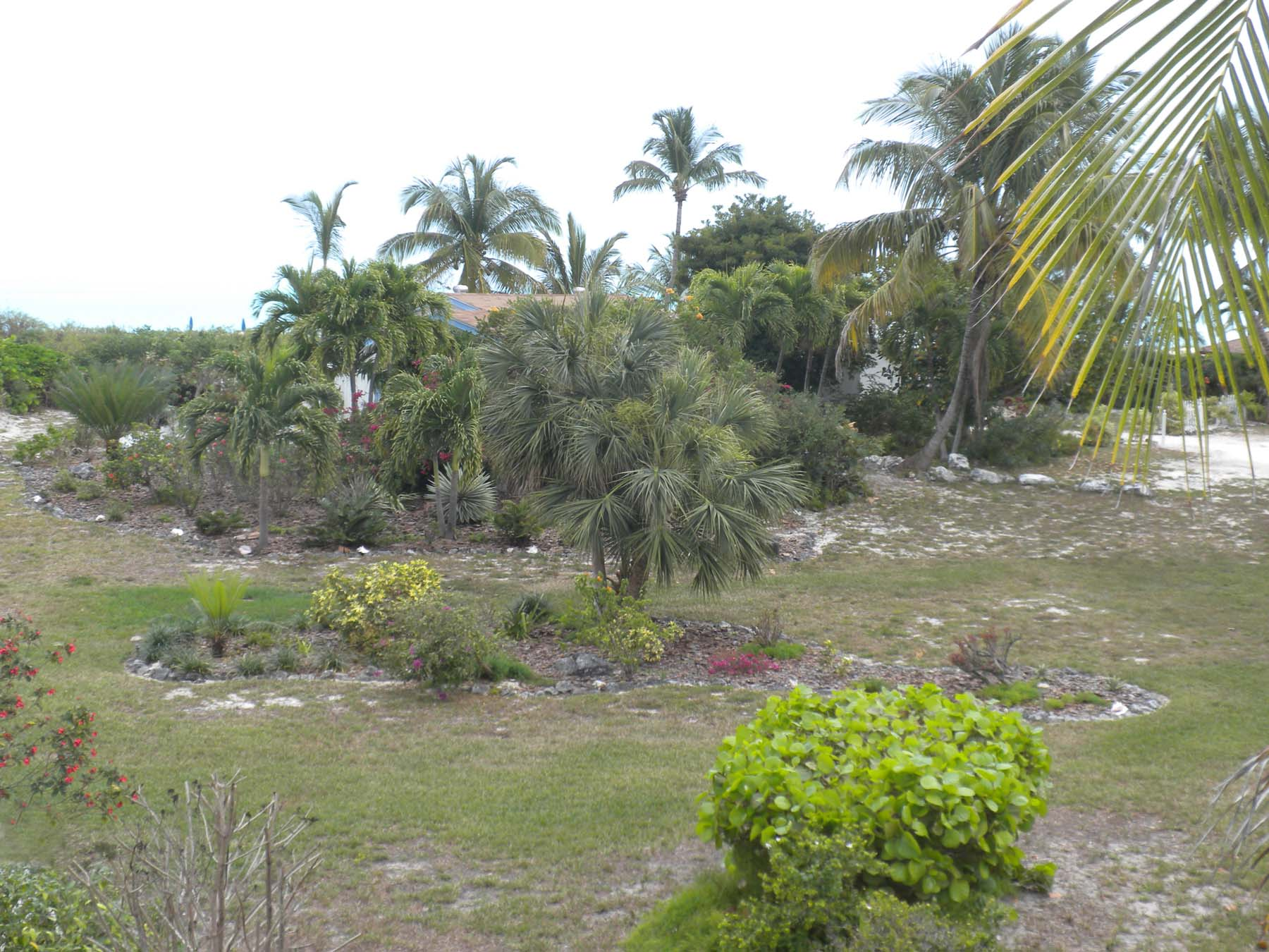 Additional photo for property listing at Multi-Family Lots Treasure Cay, Abaco Bahamas