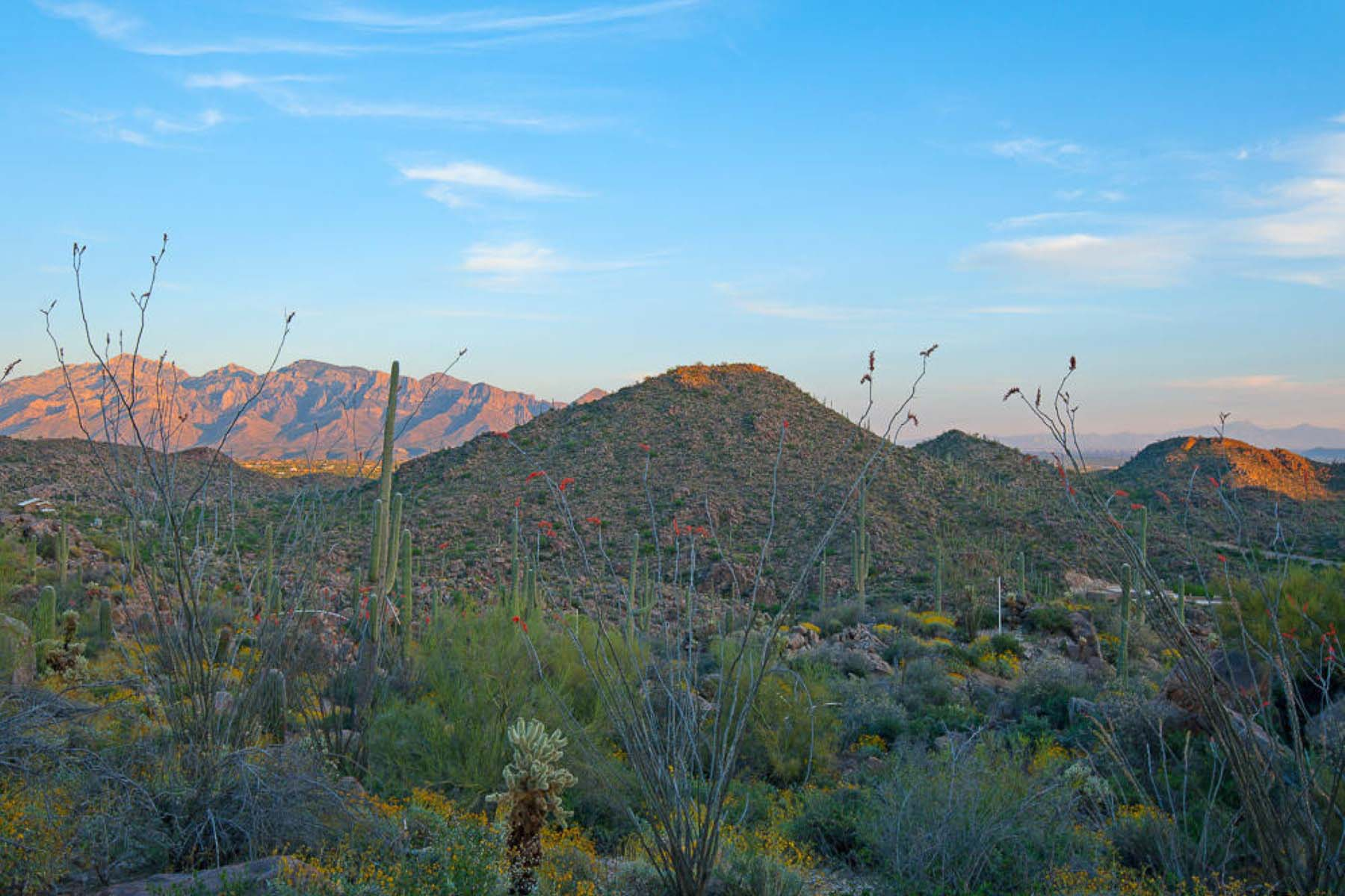 Property For Sale at Phenomenal Saguaro Ranch home site has panoramic views.