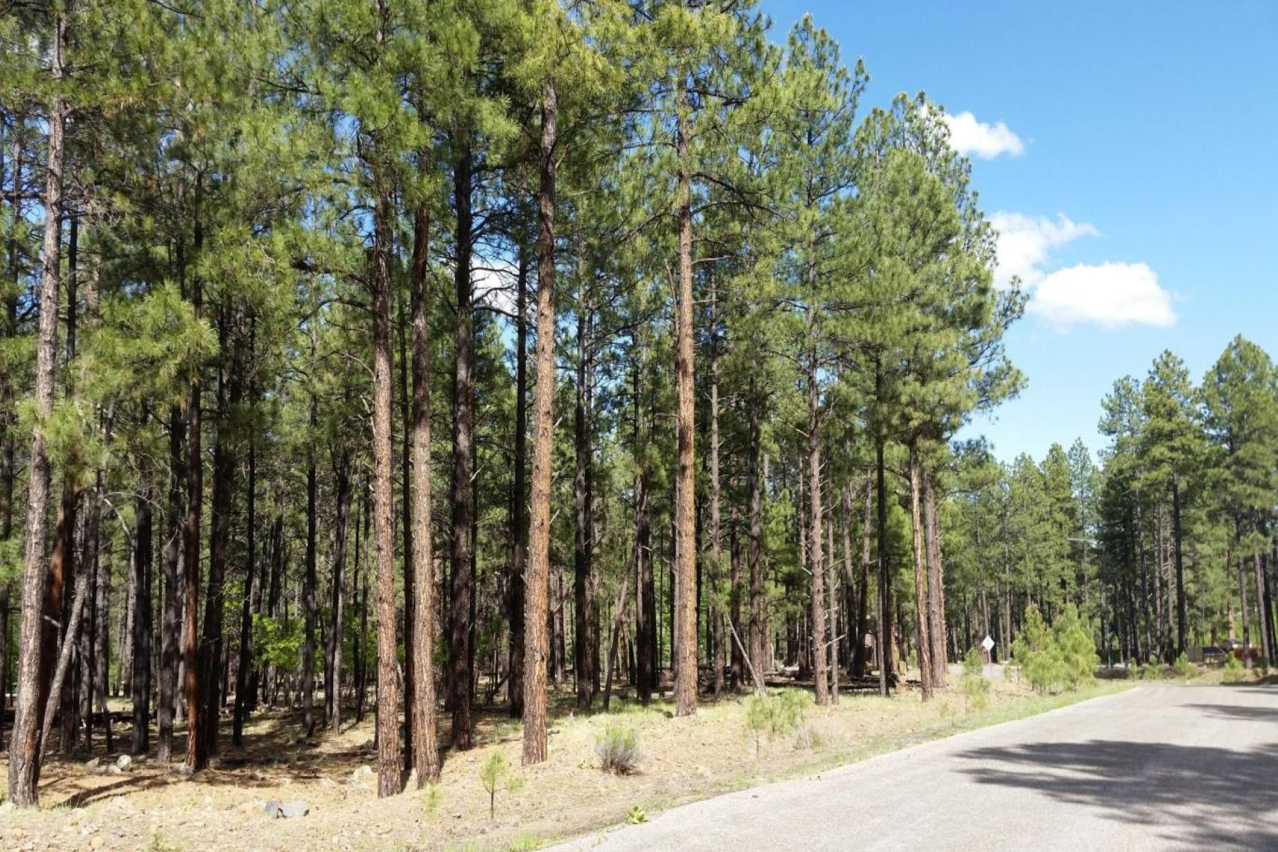 Land for Sale at Prime lot located in the prestigious neighborhood of Kinlani Estates. 1480 W Tolchaco RD Flagstaff, Arizona 86001 United States