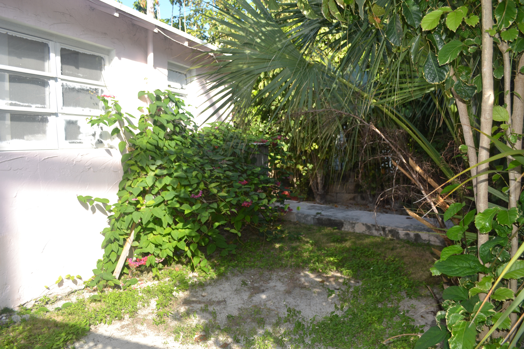 Additional photo for property listing at The Dock House - 4th Street Spanish Wells, Eleuthera Bahamas