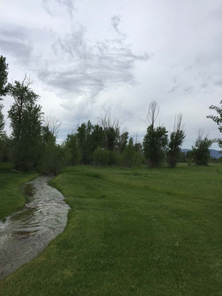 Terreno por un Venta en Nicest Neighborhood 1187 Miller Ranch Road Driggs, Idaho, 83422 Jackson Hole, Estados Unidos