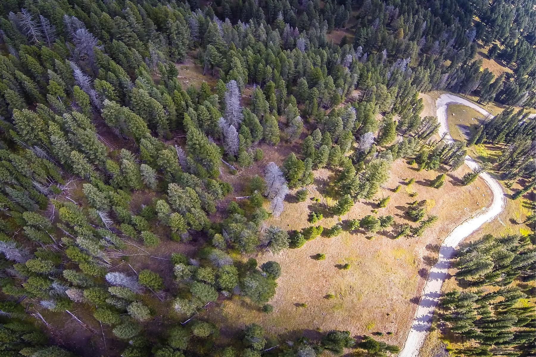 Property Of Unique Meadow Village 40 Acres