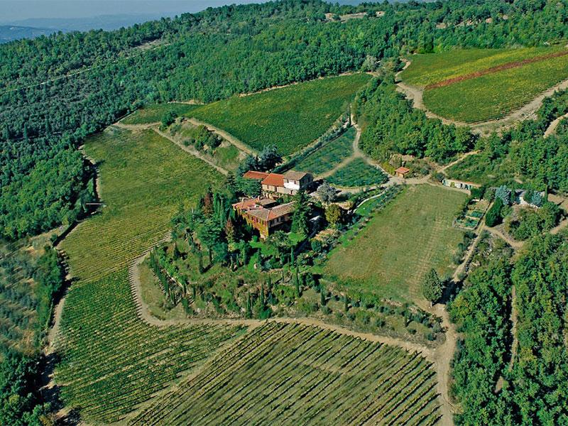 Casa para uma família para Venda às Chianti vineyard and villa Via San Leonino Panzano In Chianti, Florence 50022 Itália