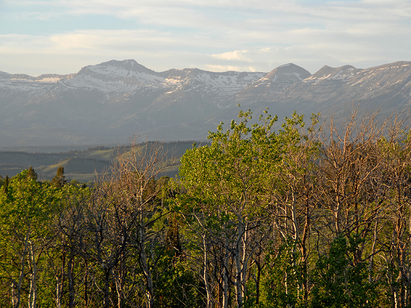 Property Of Spacious Lot in Hoback Ranches