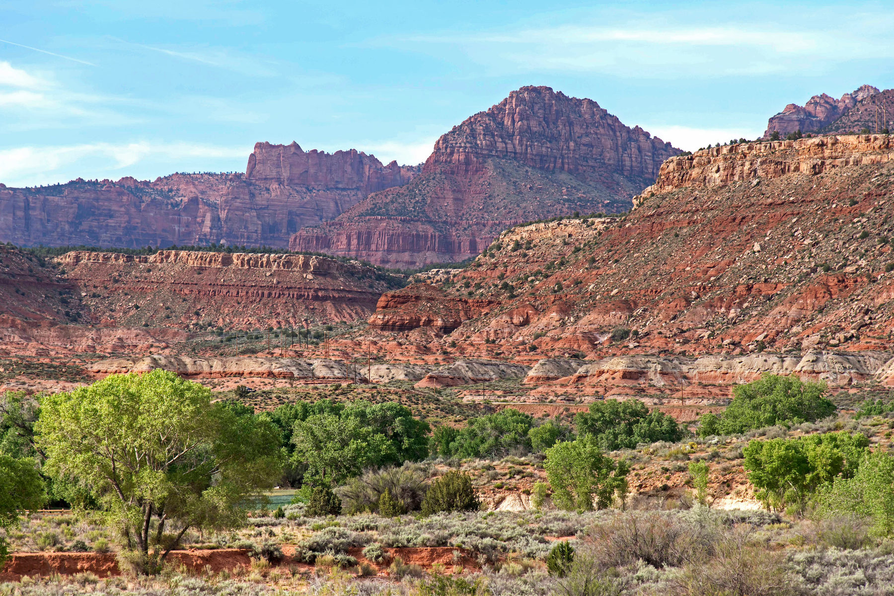 Terrain pour l Vente à 40 ACRES SURROUNDED BY ZION NATIONAL PARK! Grafton Rd Lot 1 Rockville, Utah, 84763 États-Unis