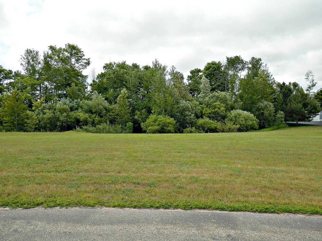 Land for Sale at Quarry Golf Course View Home Site 6307 Quarry View Drive Bay Harbor, Michigan, 49770 United States