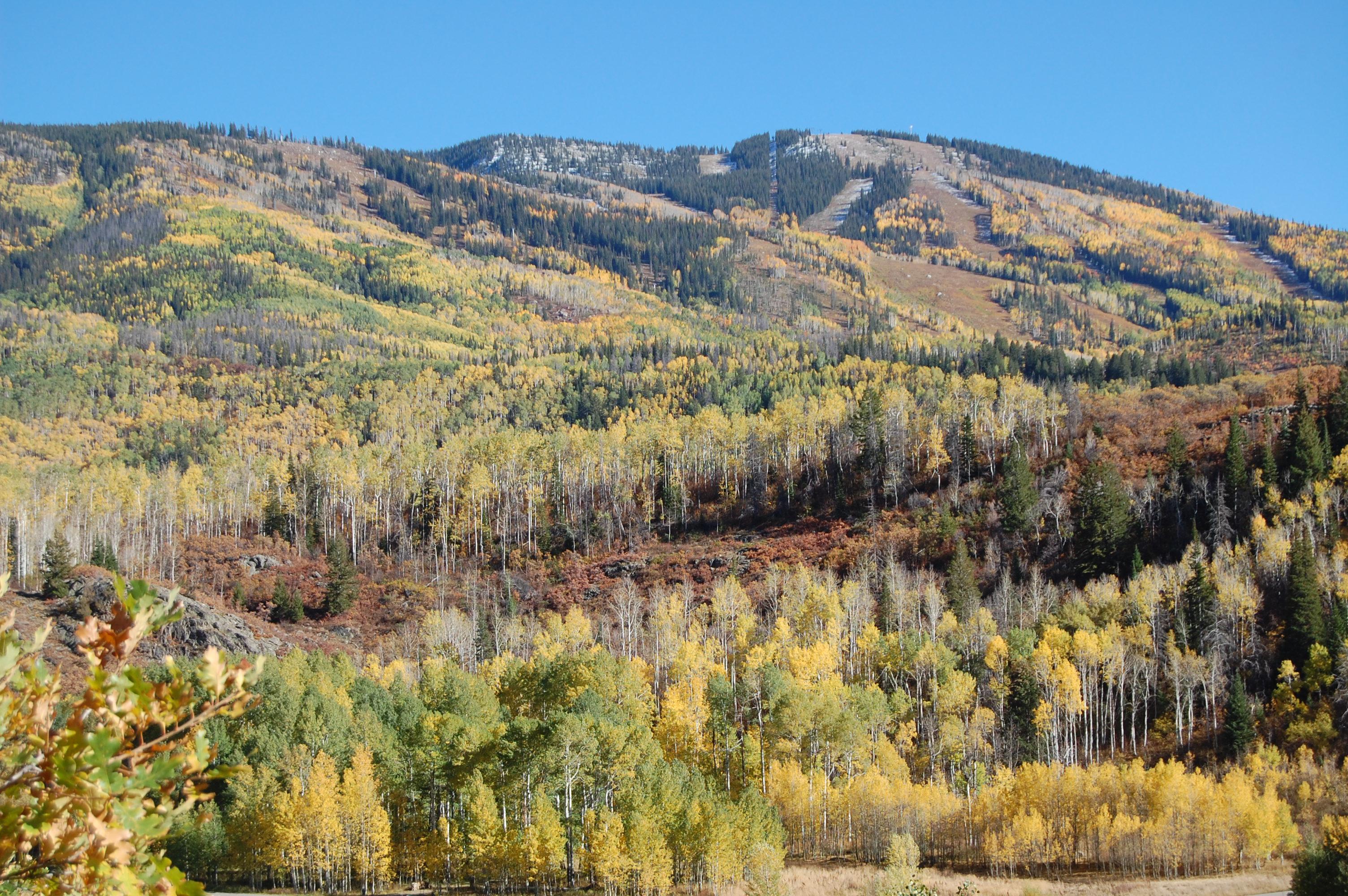Terrain pour l Vente à Fish Creek Falls Lot 2700 County Road 32 Steamboat Springs, Colorado, 80487 États-Unis