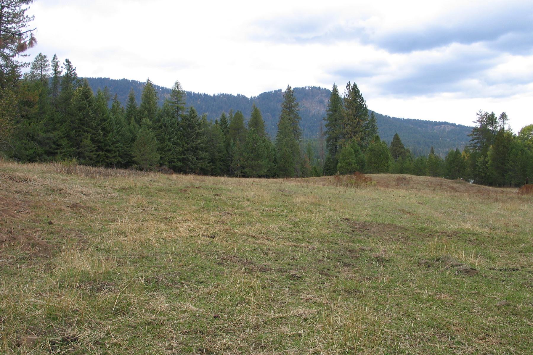 Terreno per Vendita alle ore Beautiful horse property NNA 12.8 ac.Off Boulder Place Cocolalla, Idaho, 83813 Stati Uniti