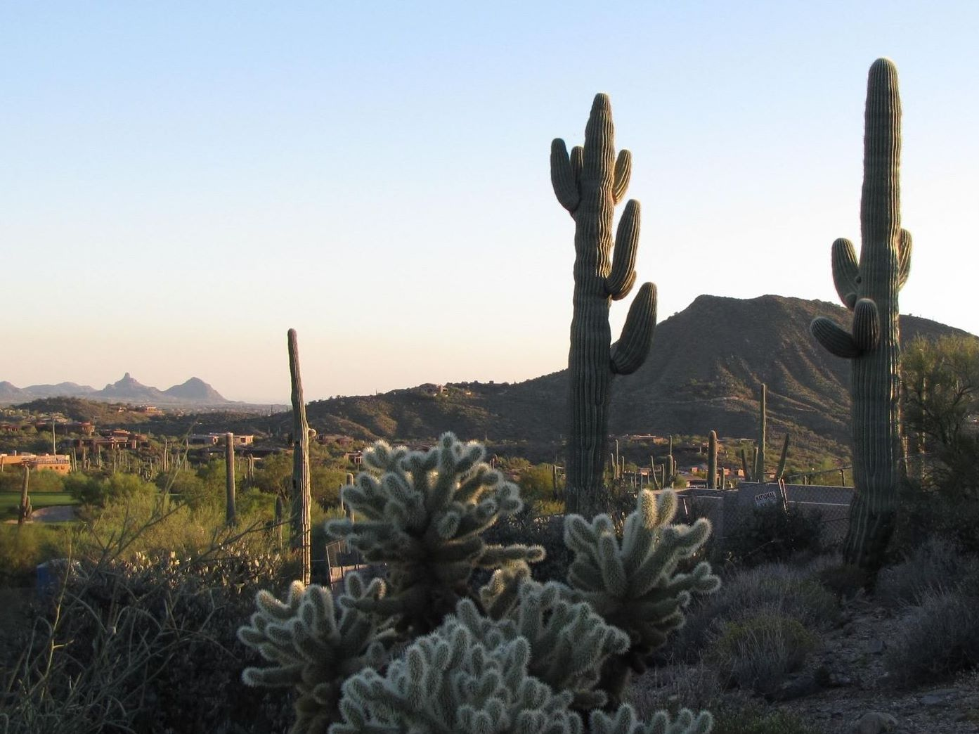 sales property at Spectacular Saguaro Forest Homesite in Desert Mountain