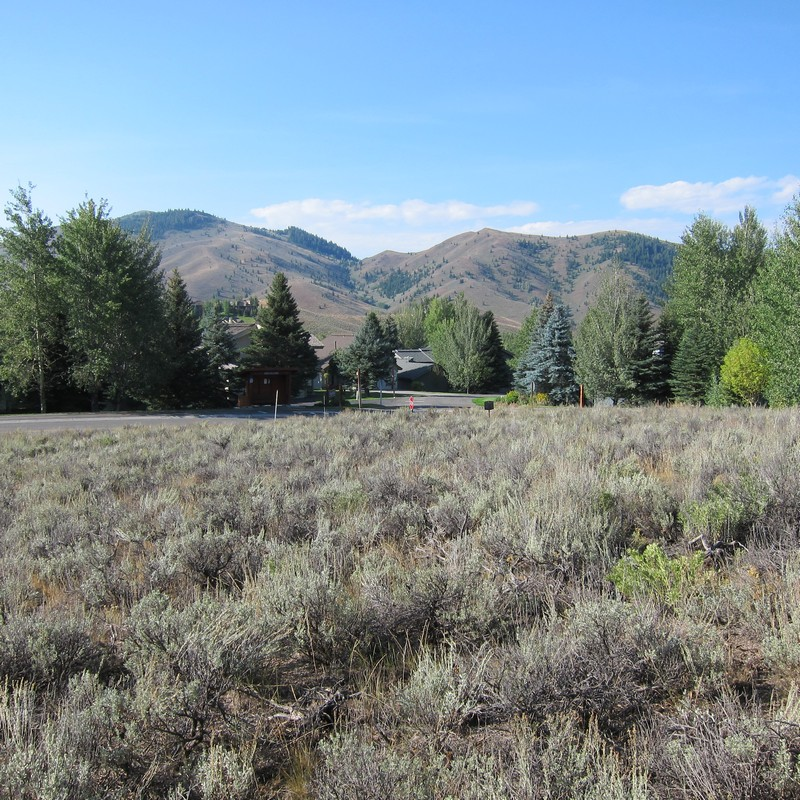 Additional photo for property listing at Elkhorn Land Priced Right 305 Morning Star Rd Sun Valley, Idaho 83353 United States