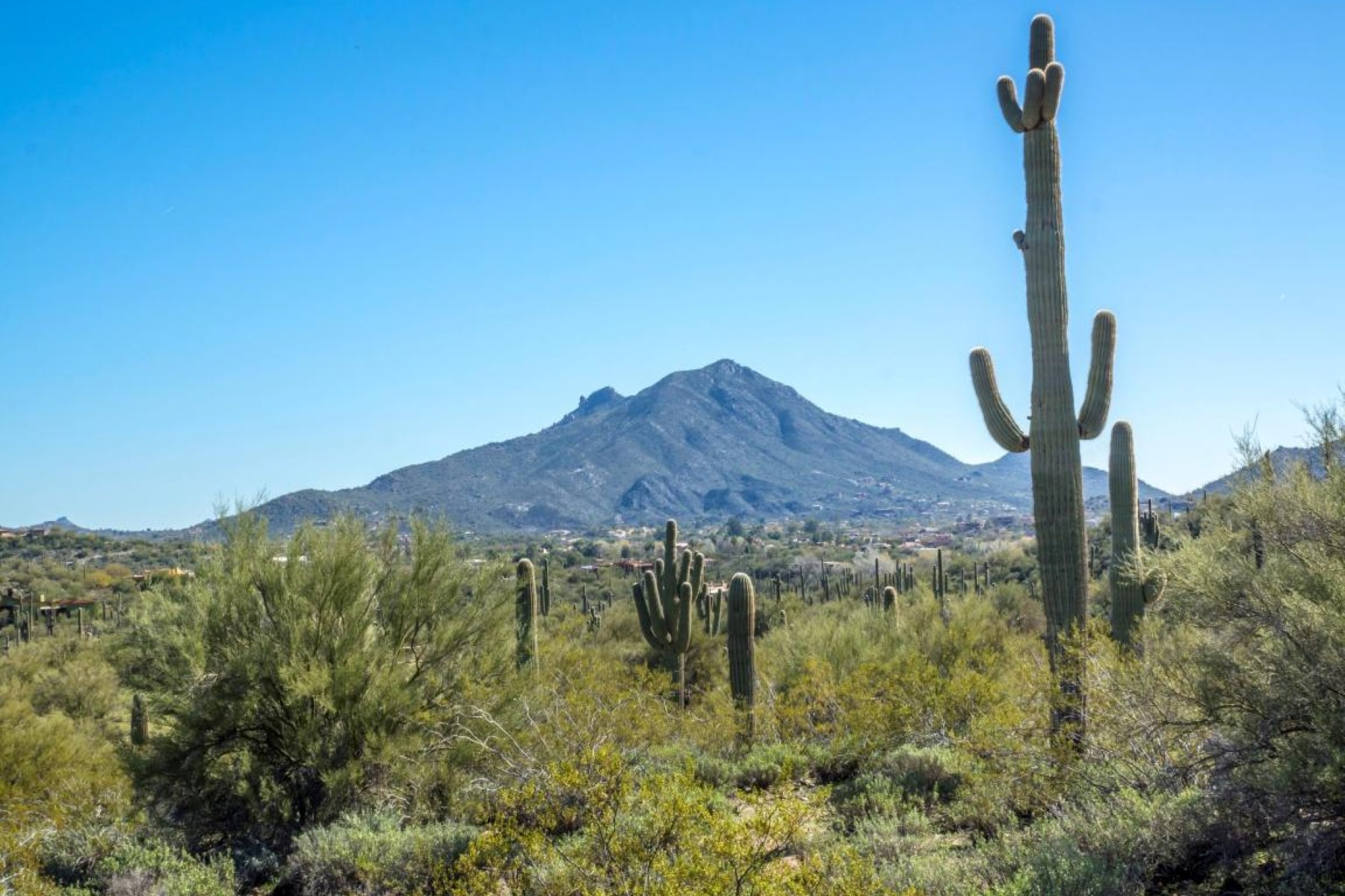 sales property at beautiful and historic Cave Creek 13 acre estate