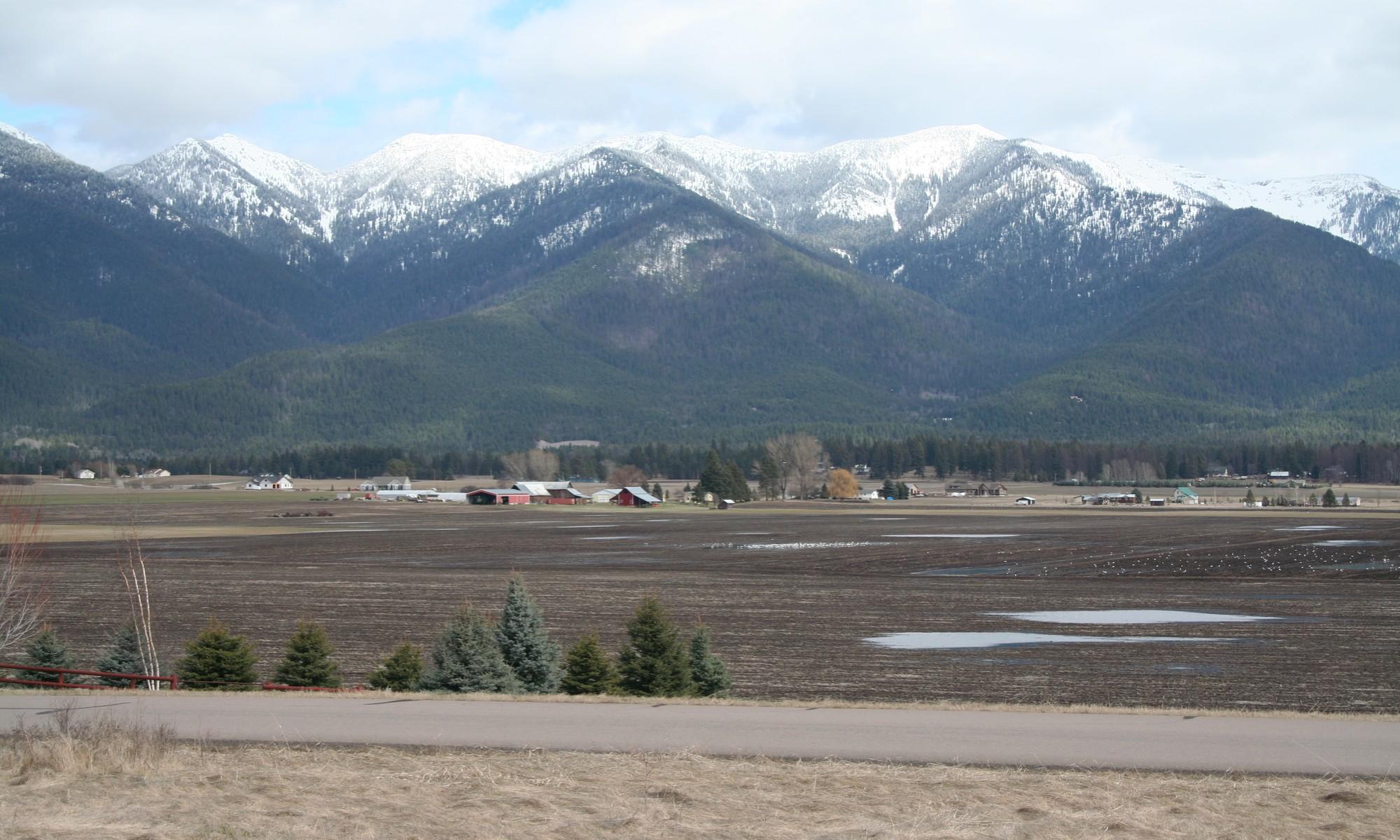 Земля для того Продажа на Fox Hill Lot 1596 Foxtail Drive Kalispell, Монтана 59901 Соединенные Штаты