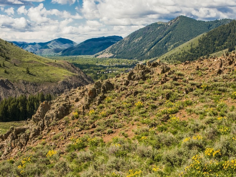 Additional photo for property listing at Lane Ranch North Lane Ranch North Entire Parcel Sun Valley, Idaho 83353 États-Unis