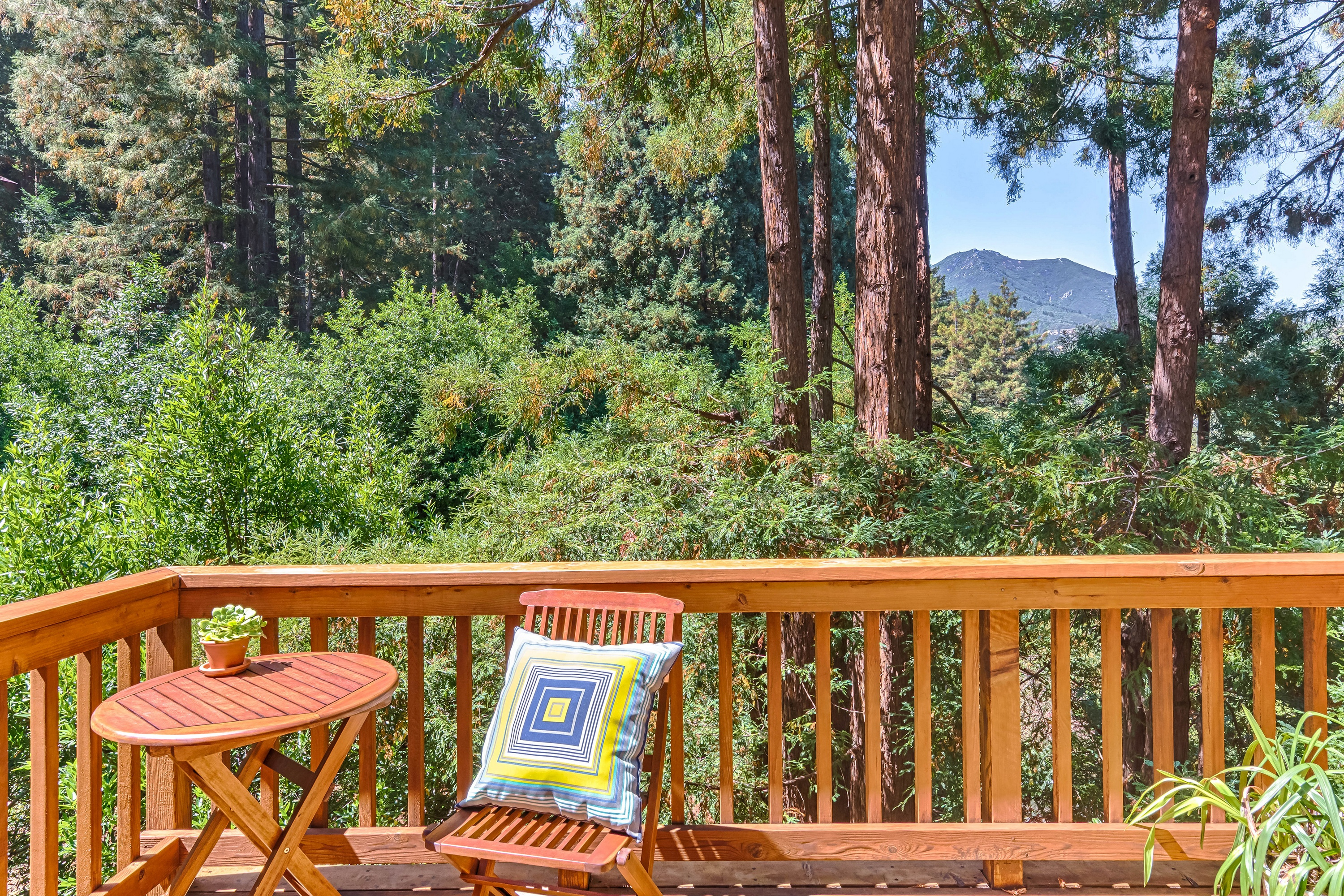 Property For Sale at Mill Valley Redwood Retreat Home With Mt. Tamalpais View!