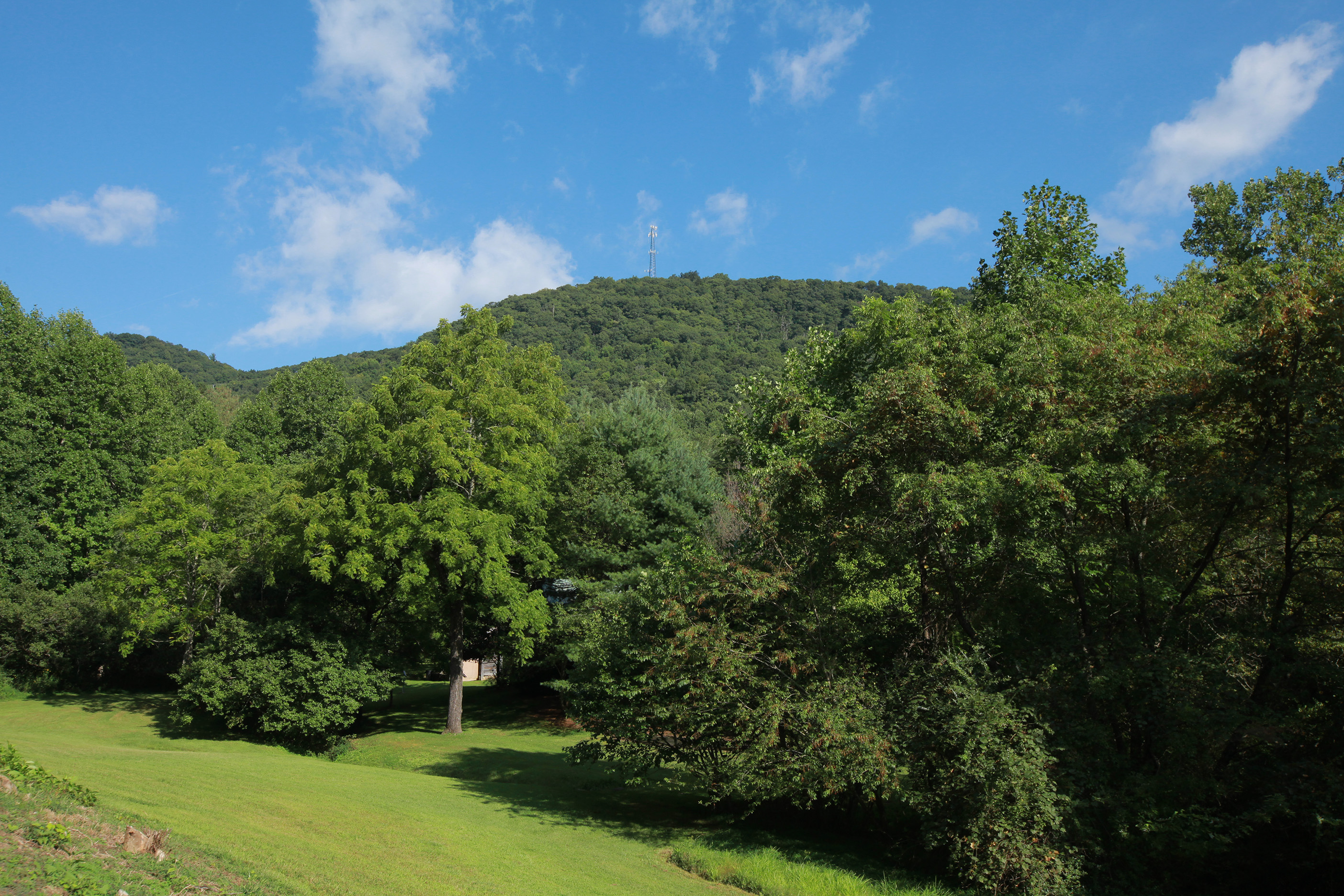 Property For Sale at 62 Acres of Mountain Property