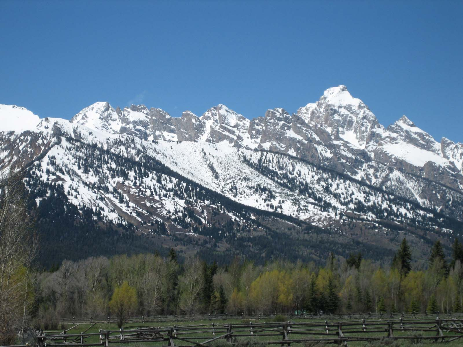 sales property at Rare Teton View Lot in South Meadow
