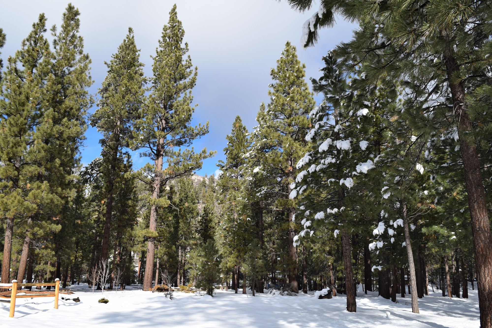 Land for Sale at 131 N. Starvation Flats Big Bear Lake, California, 92315 United States