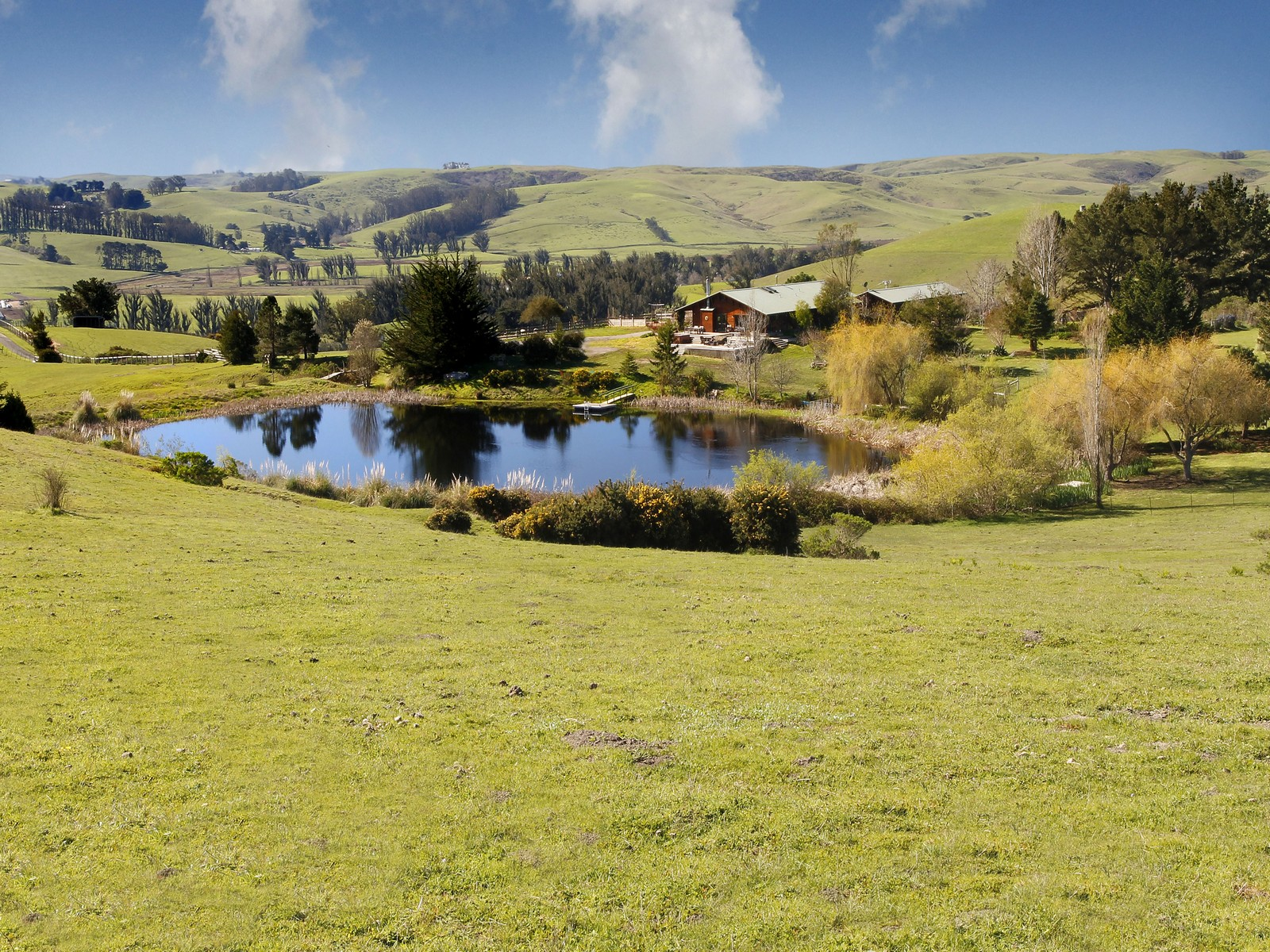 Property For Sale at Skyhorse Ranch