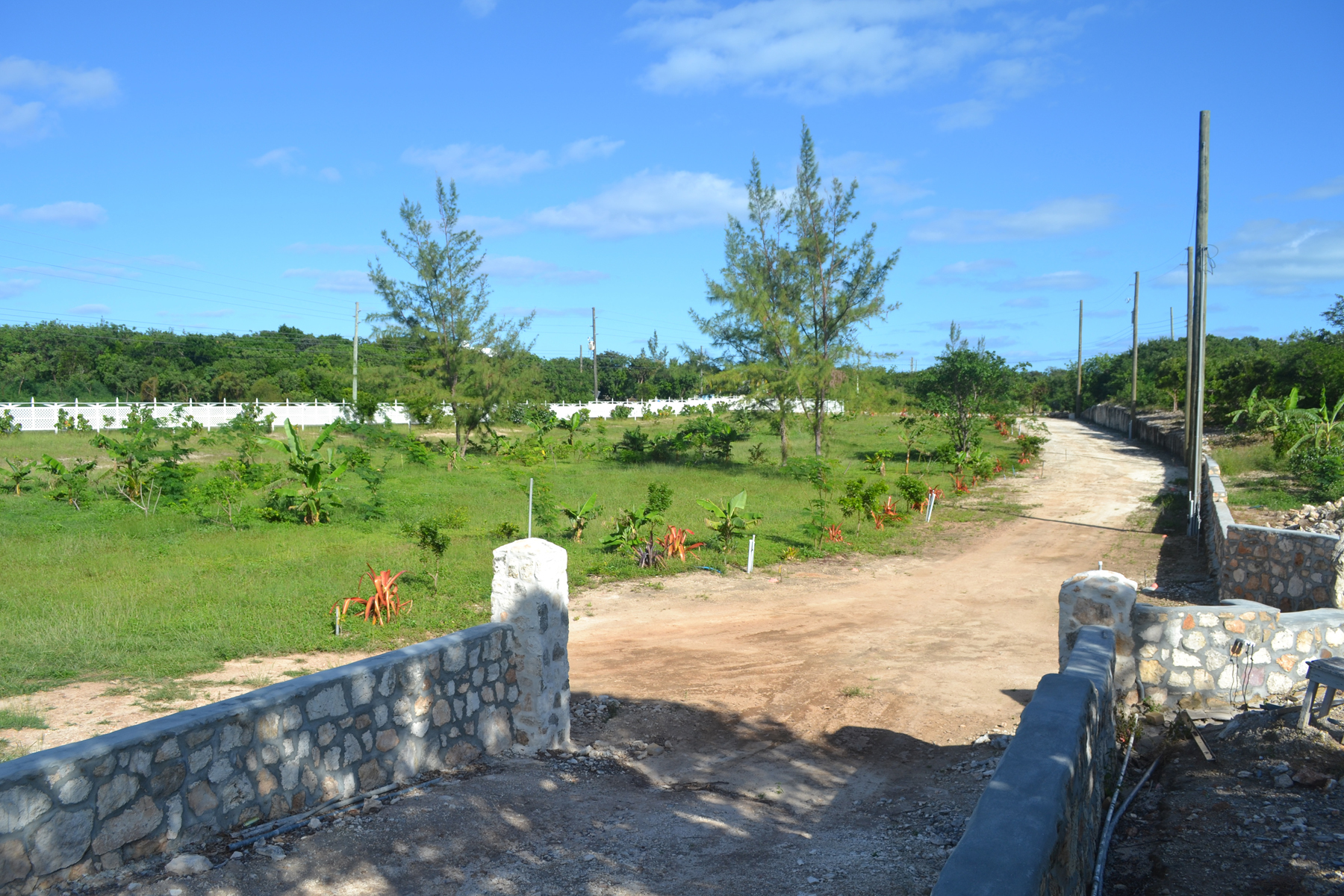 Additional photo for property listing at Ocean Harbour Vacant Lots 西班牙维尔斯, 伊路瑟拉 巴哈马