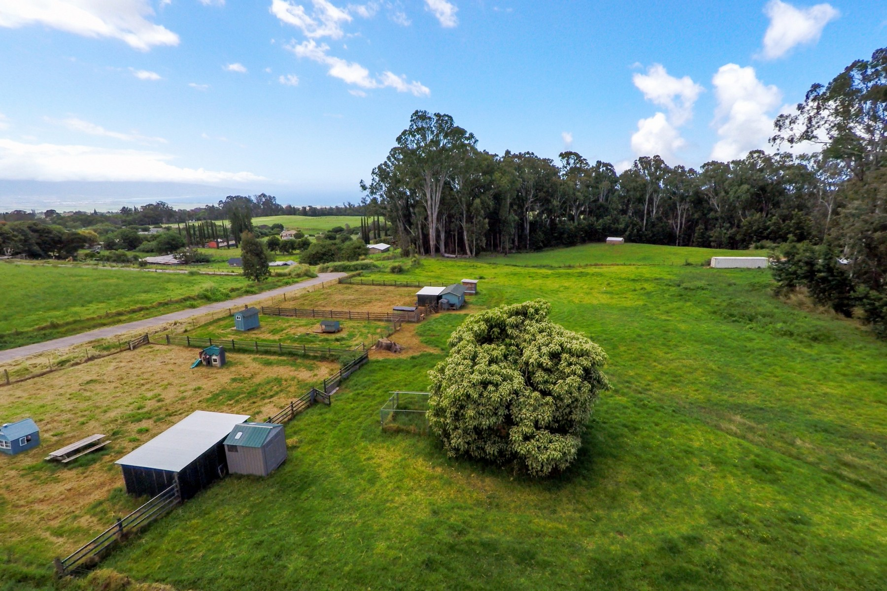 sales property at Quintessential Olinda on 5 Acres With Water