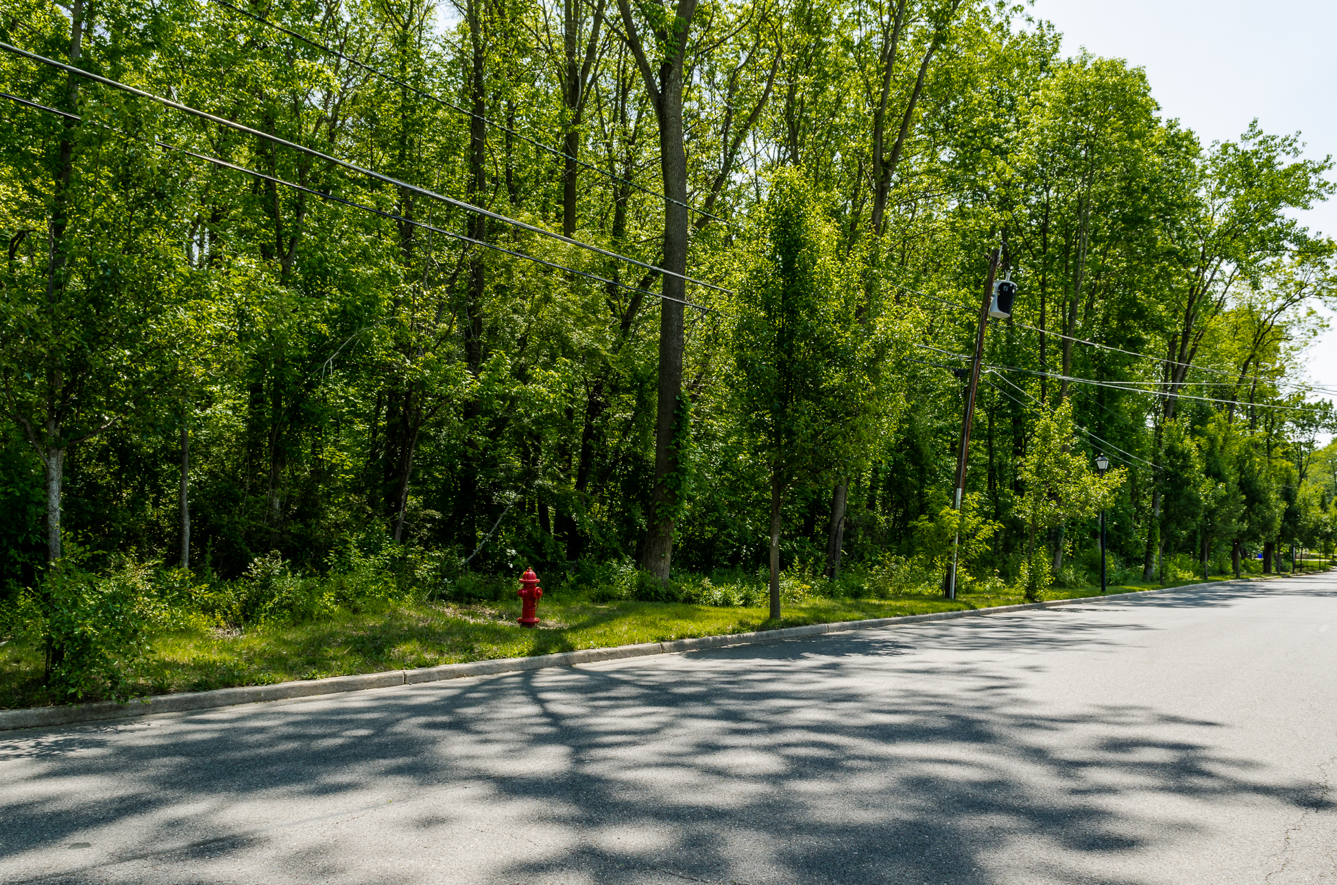 Land for Sale at Improved and Ready-to-Build in Fieldsboro 00 Union Street Lot 1 Fieldsboro, 08505 United States