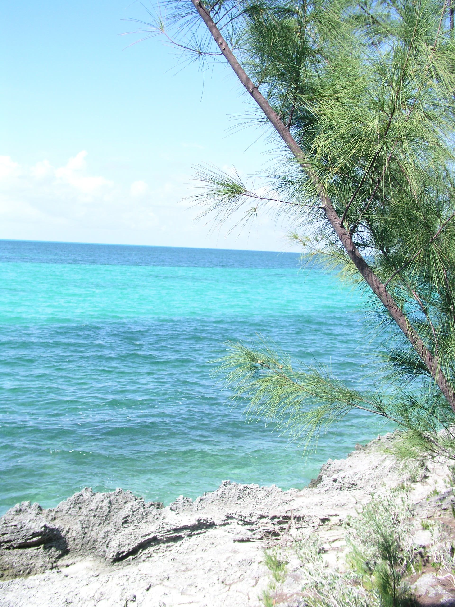 Additional photo for property listing at Elevated Waterview Lot Spanish Wells, Eleuthera Bahamas