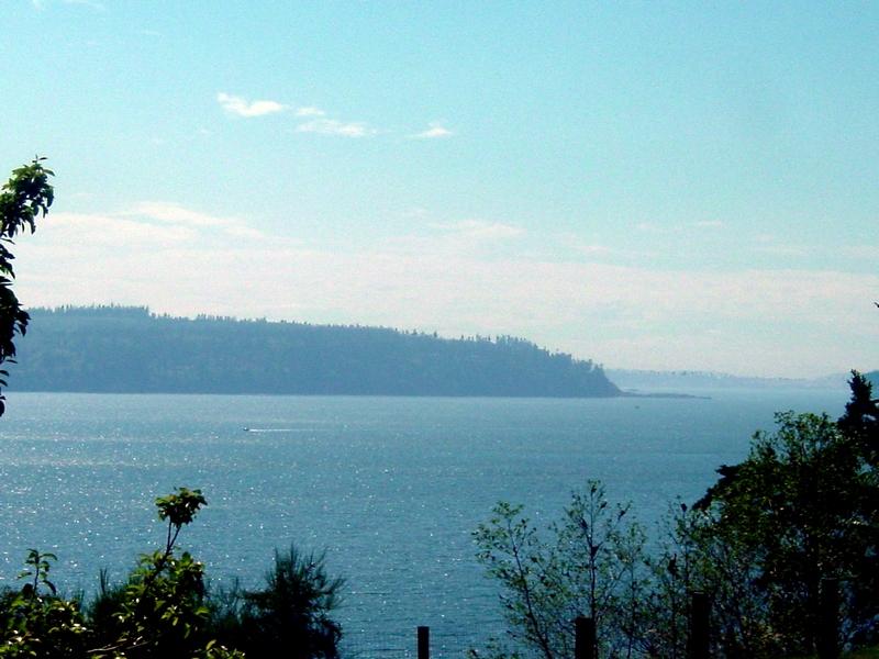 獨棟家庭住宅 為 出售 在 3922 S Camano Dr Camano Island, 華盛頓州 98282 美國